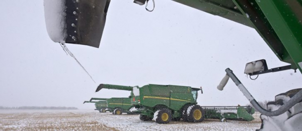 SASK. FARMERS FACING MESSY TASK